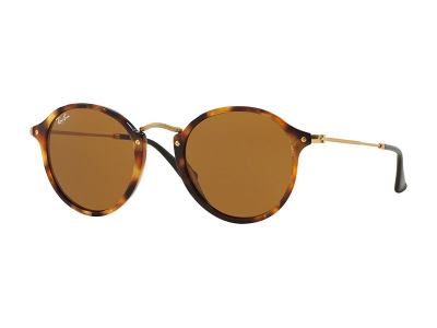 Ray-Ban Round Fleck RB2447 - 1160