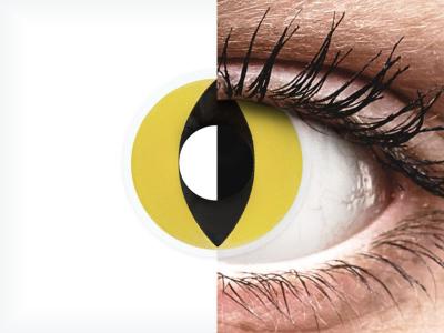 ColourVUE Crazy Lens - Cat Eye - brez dioptrije (2 leči)