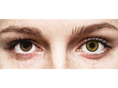 SofLens Natural Colors Dark Hazel - brez dioptrije (2 leči)
