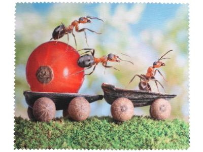 Čistilna krpica za očala - Mravlje