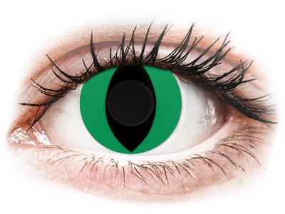 CRAZY LENS - Cat Eye Green - dnevne leče brez dioptrije (2 leči)