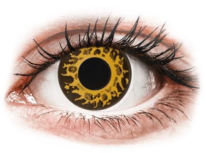 CRAZY LENS - Cheetah - dnevne leče brez dioptrije (2 leči)